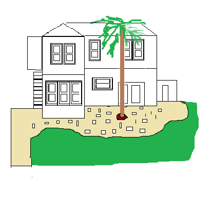 house palm tree.png