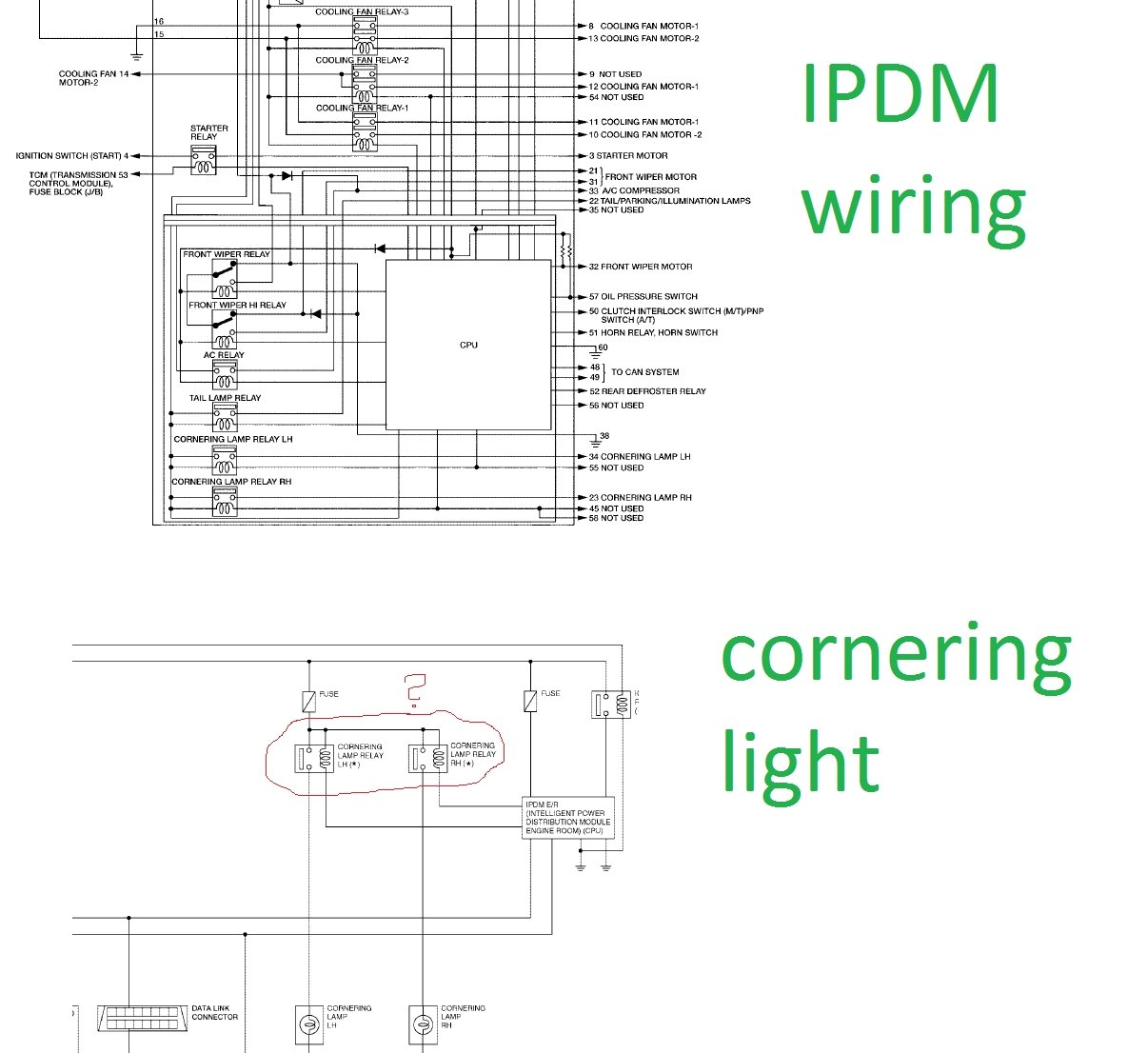 Astounding Wiring Diagram For Cornering Lights Wiring Library Wiring Cloud Hisonuggs Outletorg