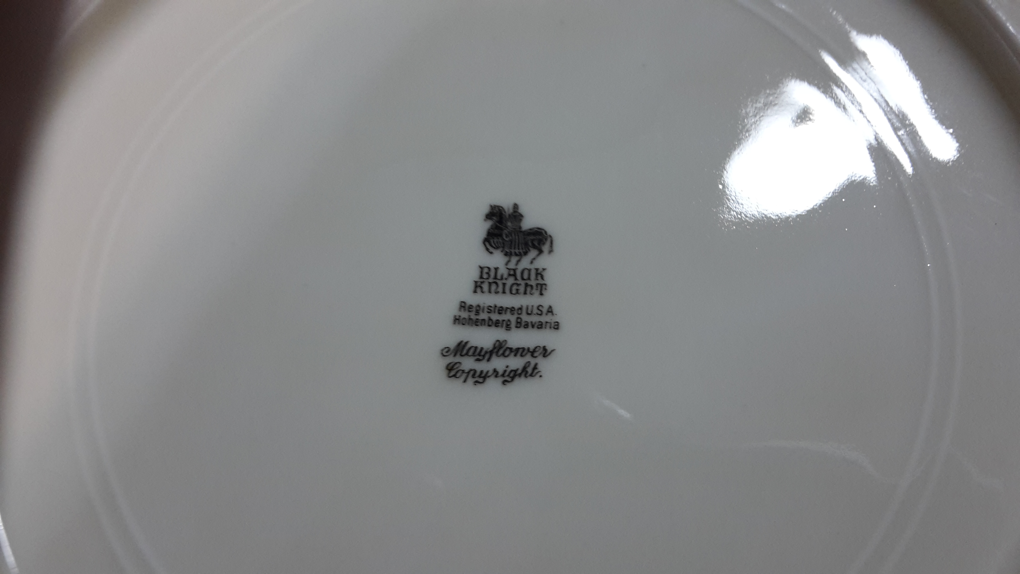 Black Knight Logo on rear of plate.jpg