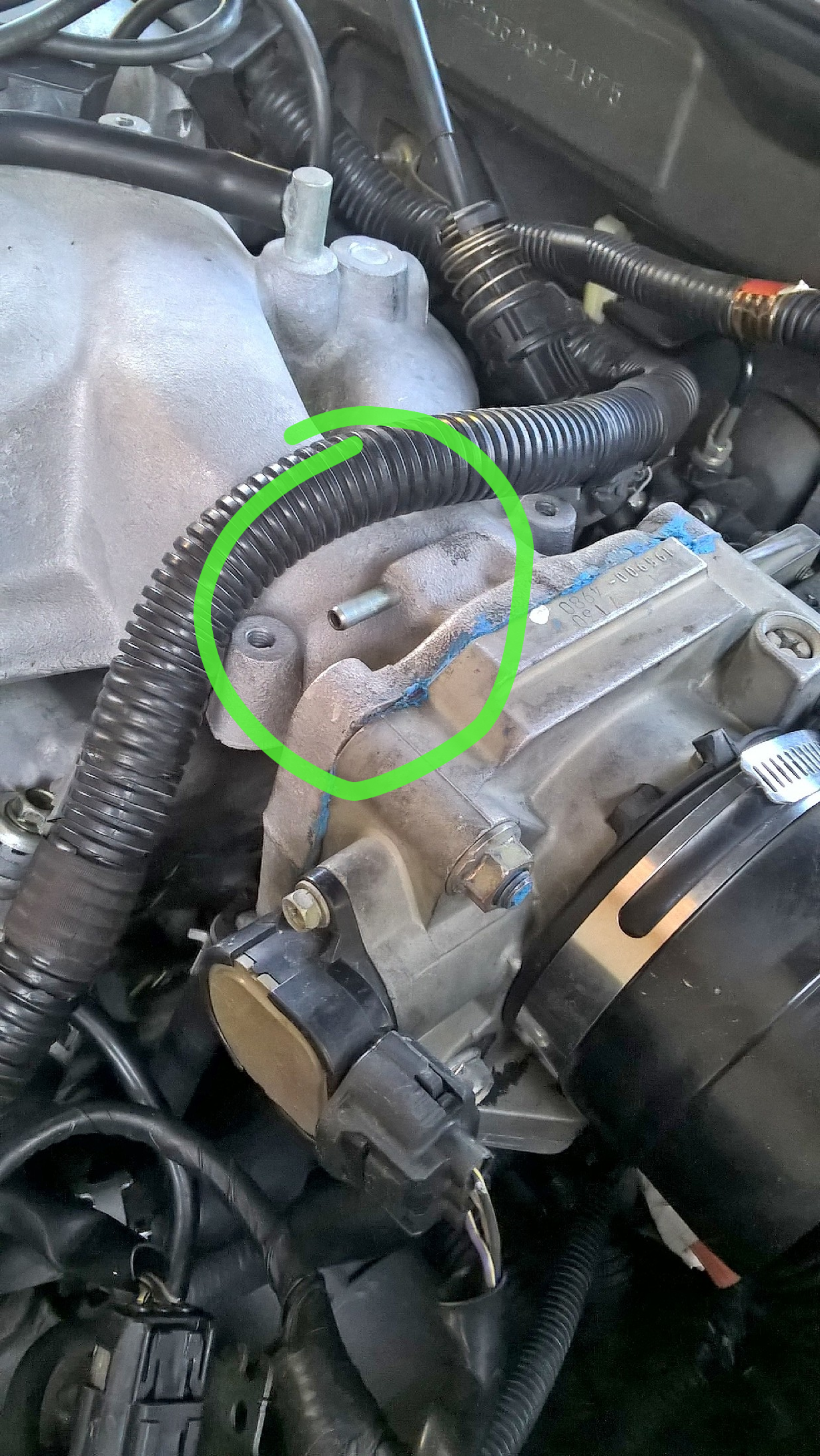 Vacuum line on throttle body.png