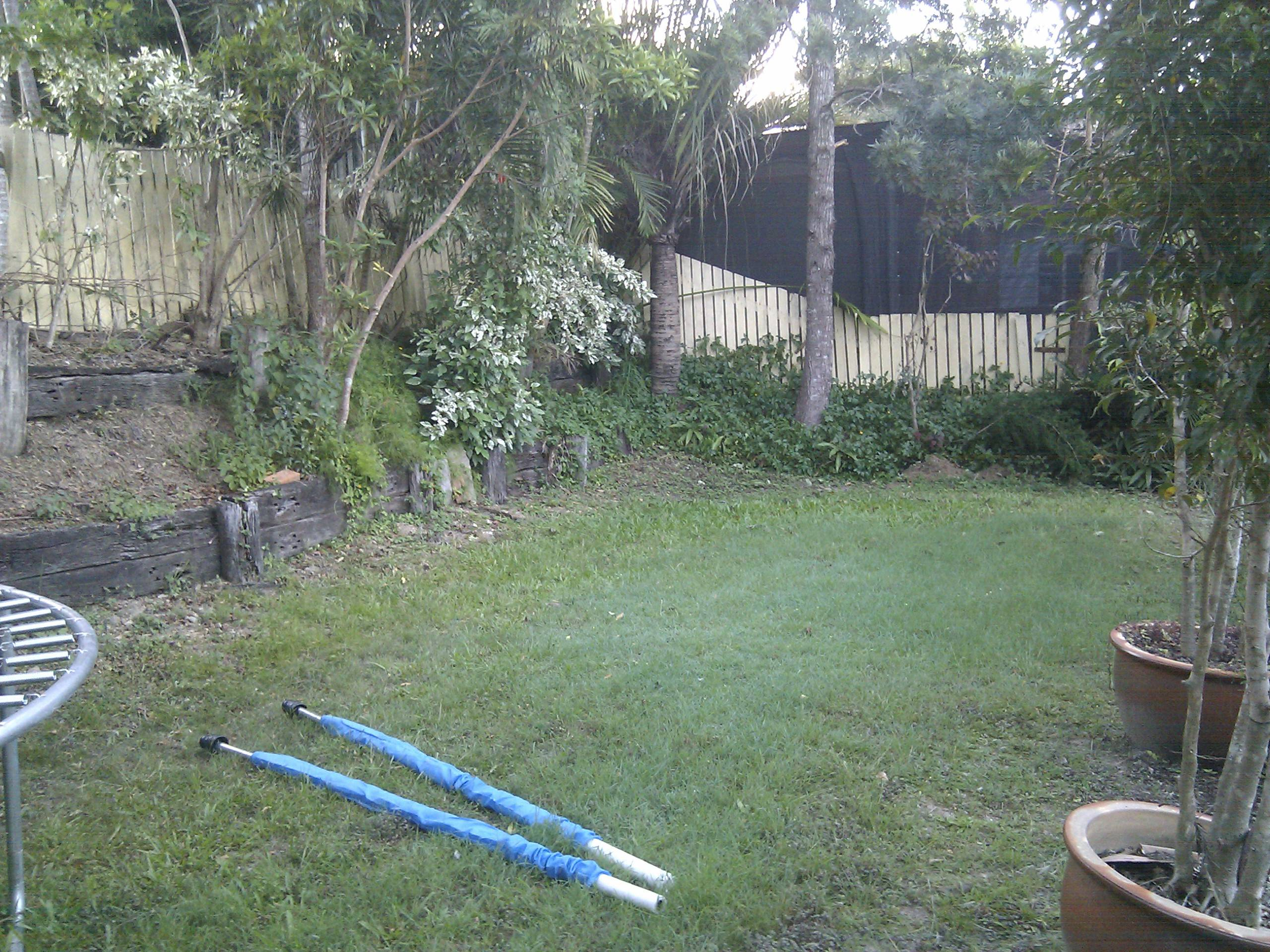 I live in Queensland Brisbane City Council area. My backyard has ...