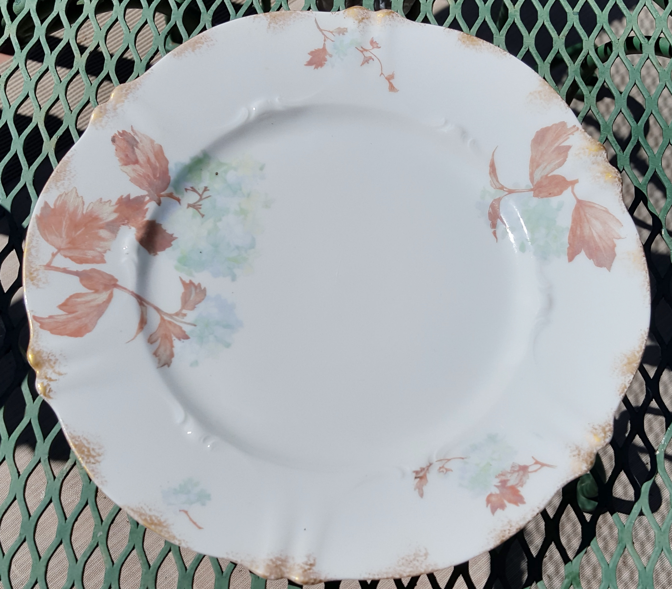 dinnerplate.jpg