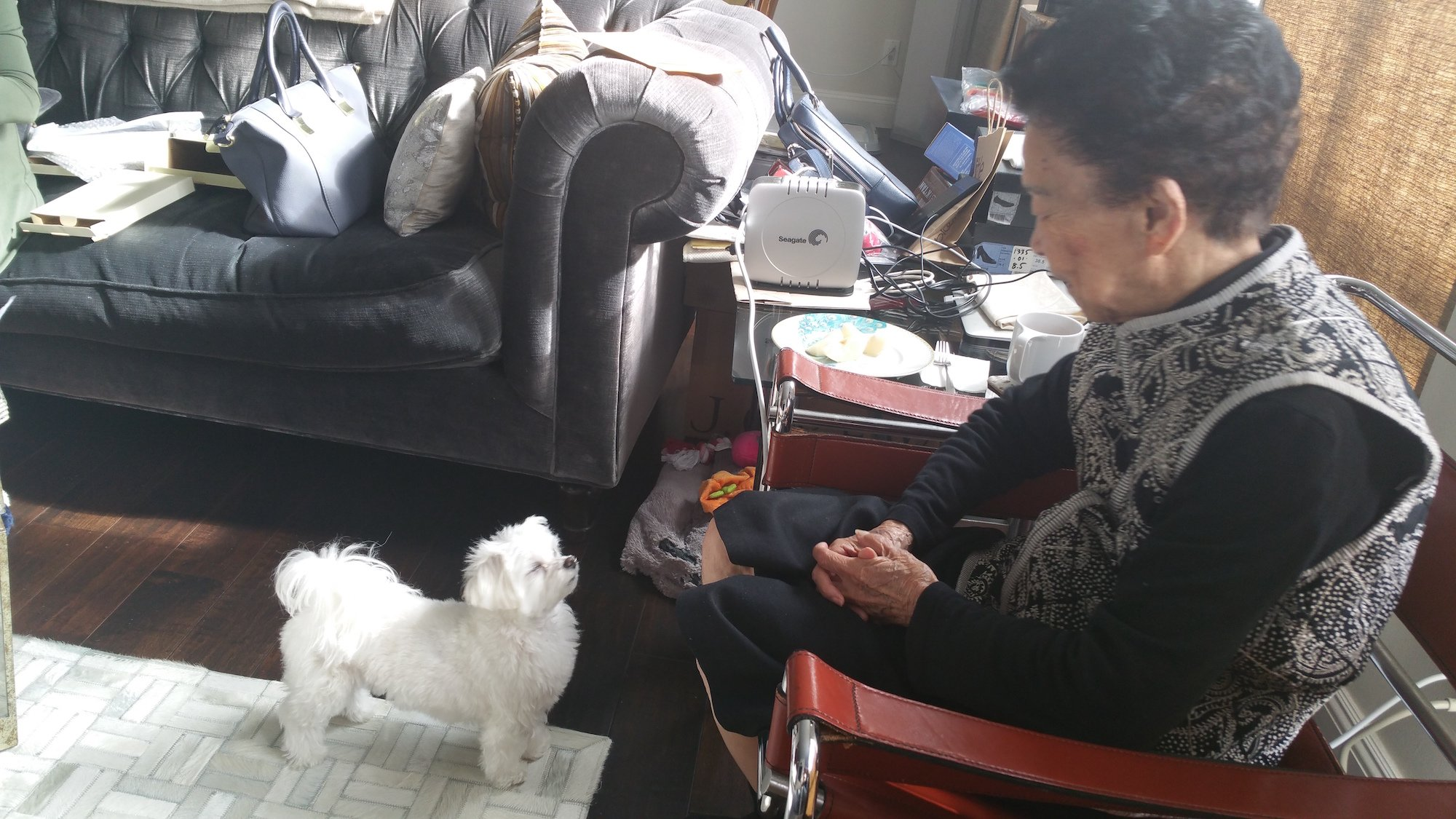20160514_Mochi with Grandma Sm.jpeg