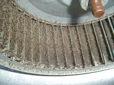 e298d10d-bfae-4beb-8dc7-c002b6f5cd4d_Blower wheel dirty.jpg