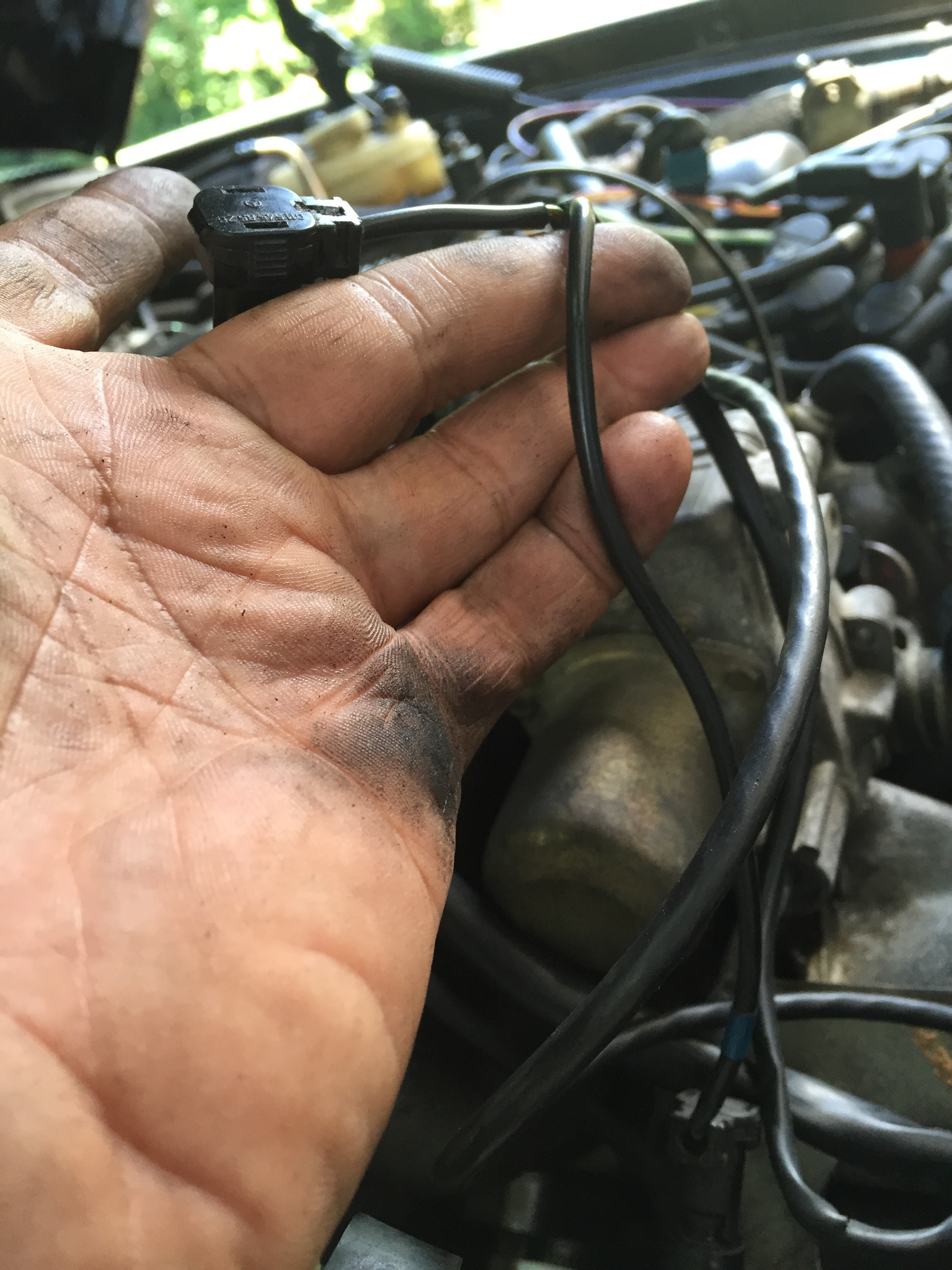 I Purchased A 1983 380sl That Has Been Sitting For 4 Years And Am Fuel Filter Img 4638img 4638 4639