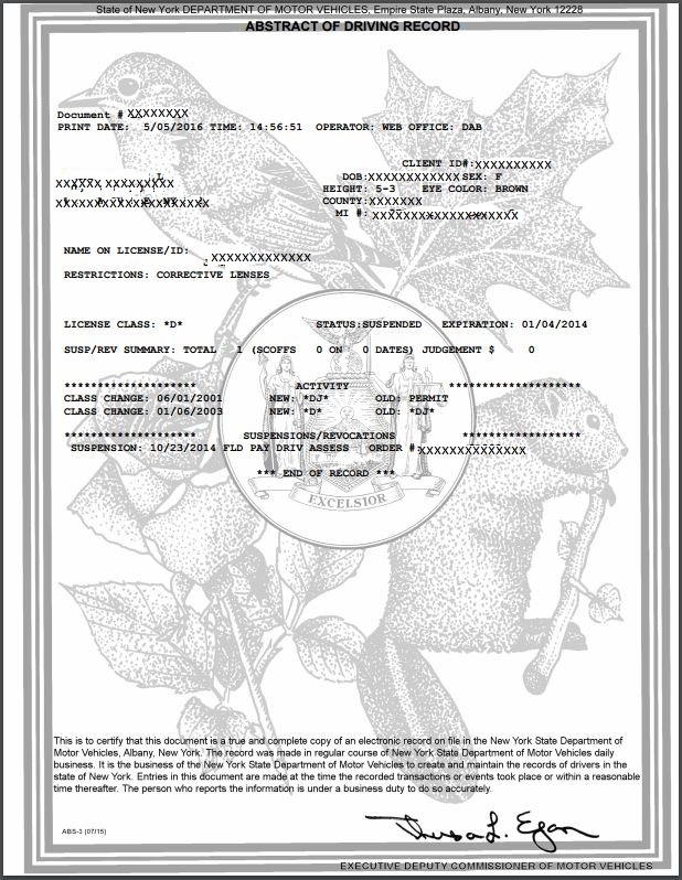 Commissioner of motor vehicles ny for Driver license motor vehicle record