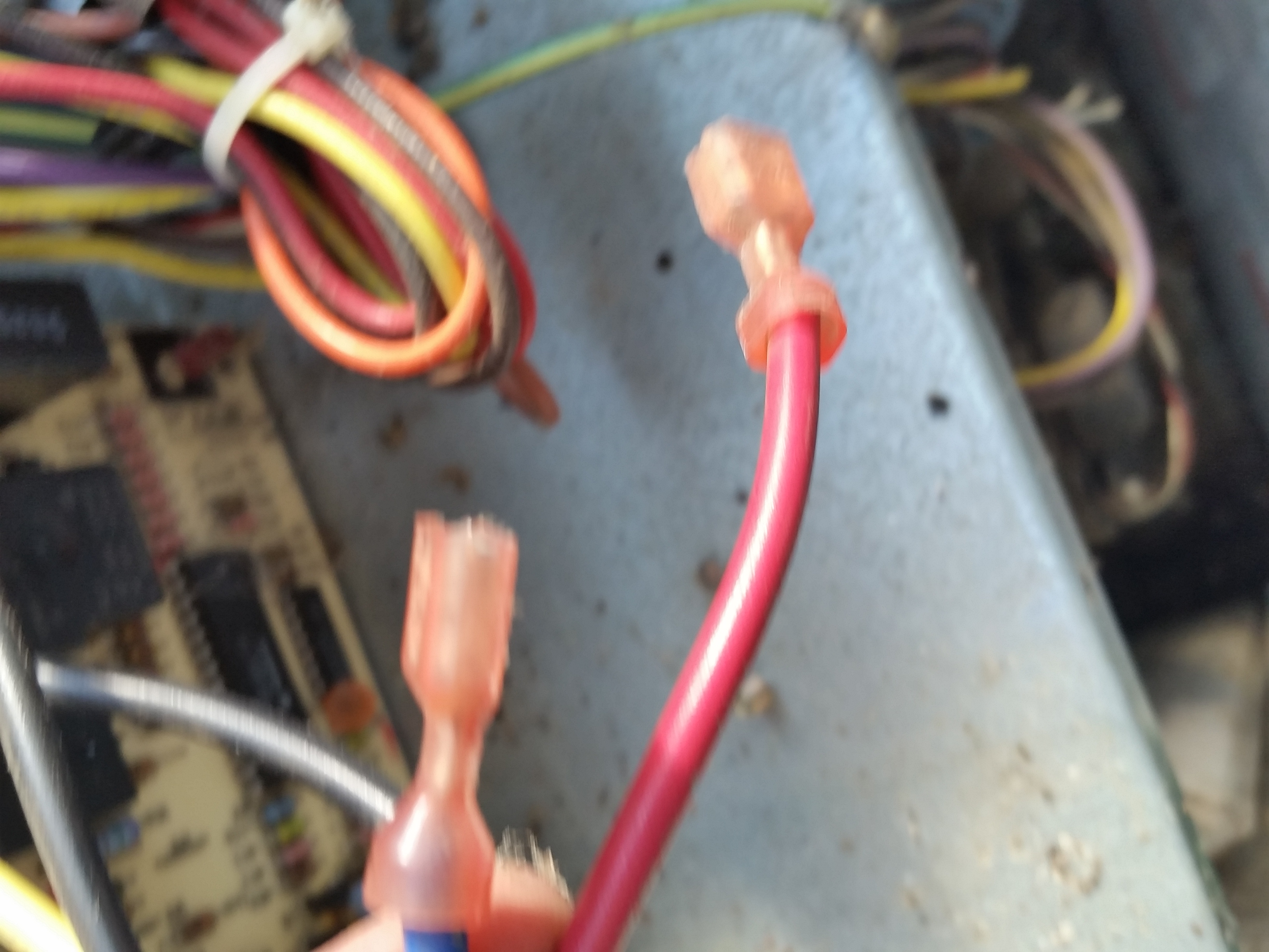Red wire traced to panel.jpg