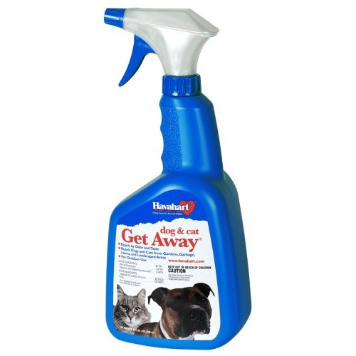 why does my cat spray after being fixed