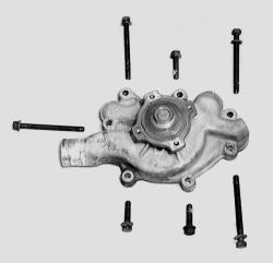 I need to rep the water pump on my wife's 1998 Dodge Ram 1500 ...